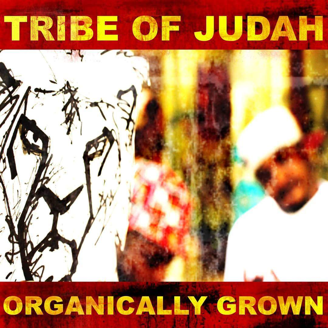 Tribe of Judah - Organically Grown