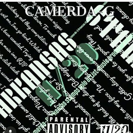 Camerda-G - 11/20 - its HIP HOP music (one of the best Indie
